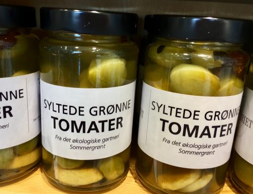 Lav dine egne lækre, grønne tomater